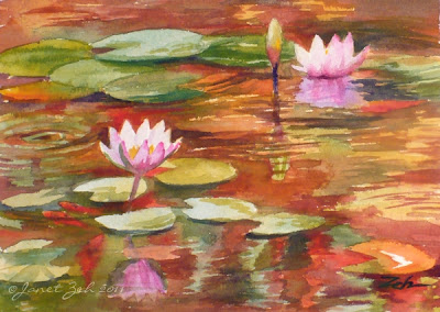 Pink waterlilies from a botanical garden pond in Hawaii