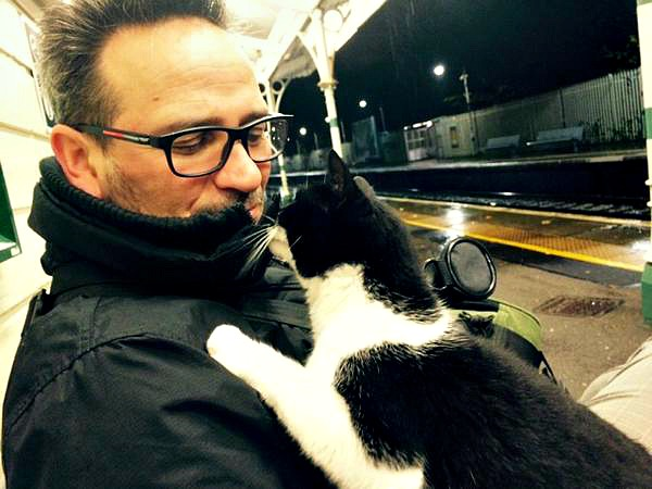 gipsy hill station cat