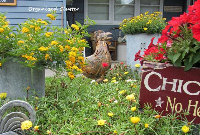 Chicken Themed Garden