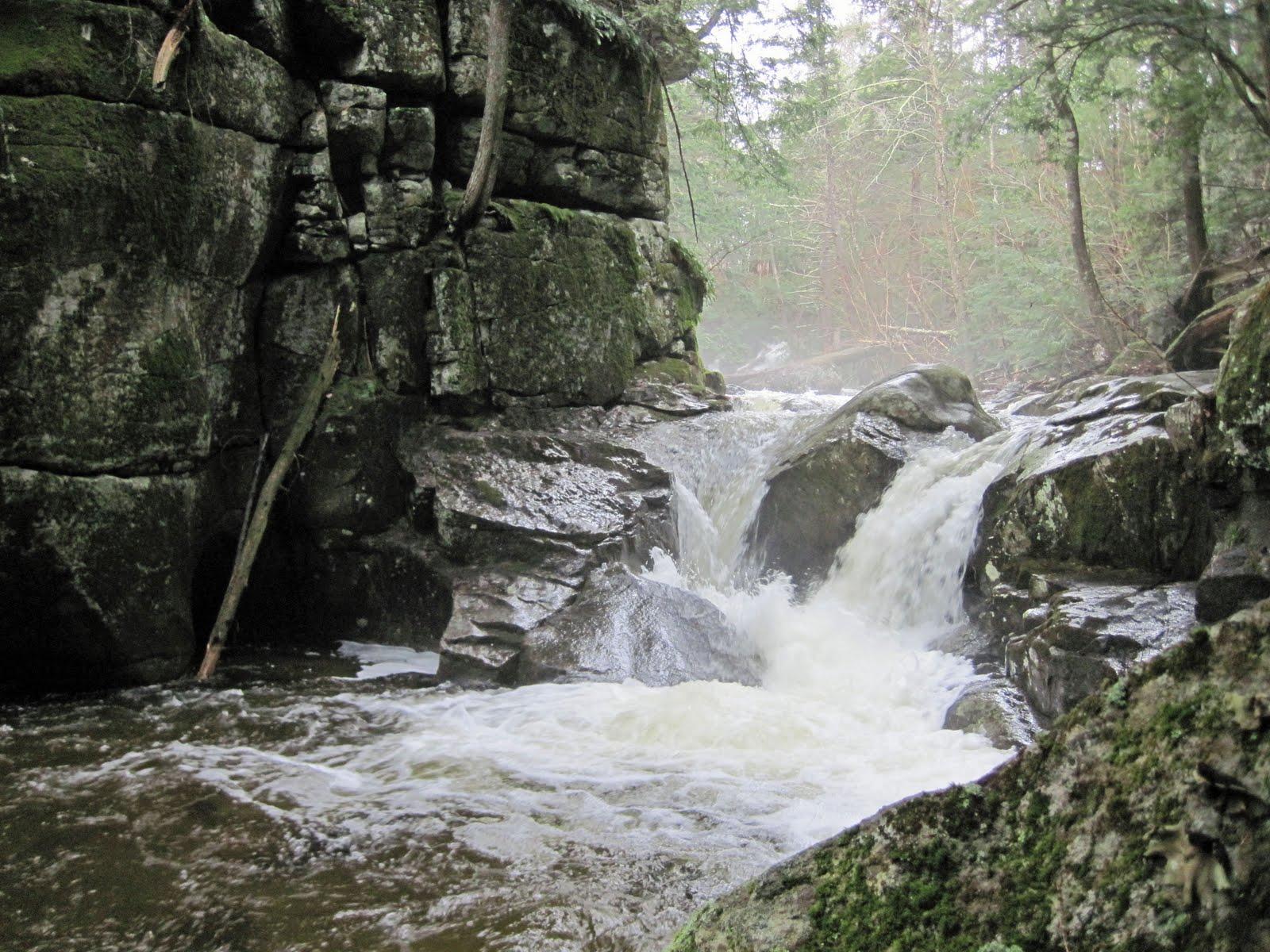 Ruff waters fly fishing adirondack brook trout for Adirondack fly fishing