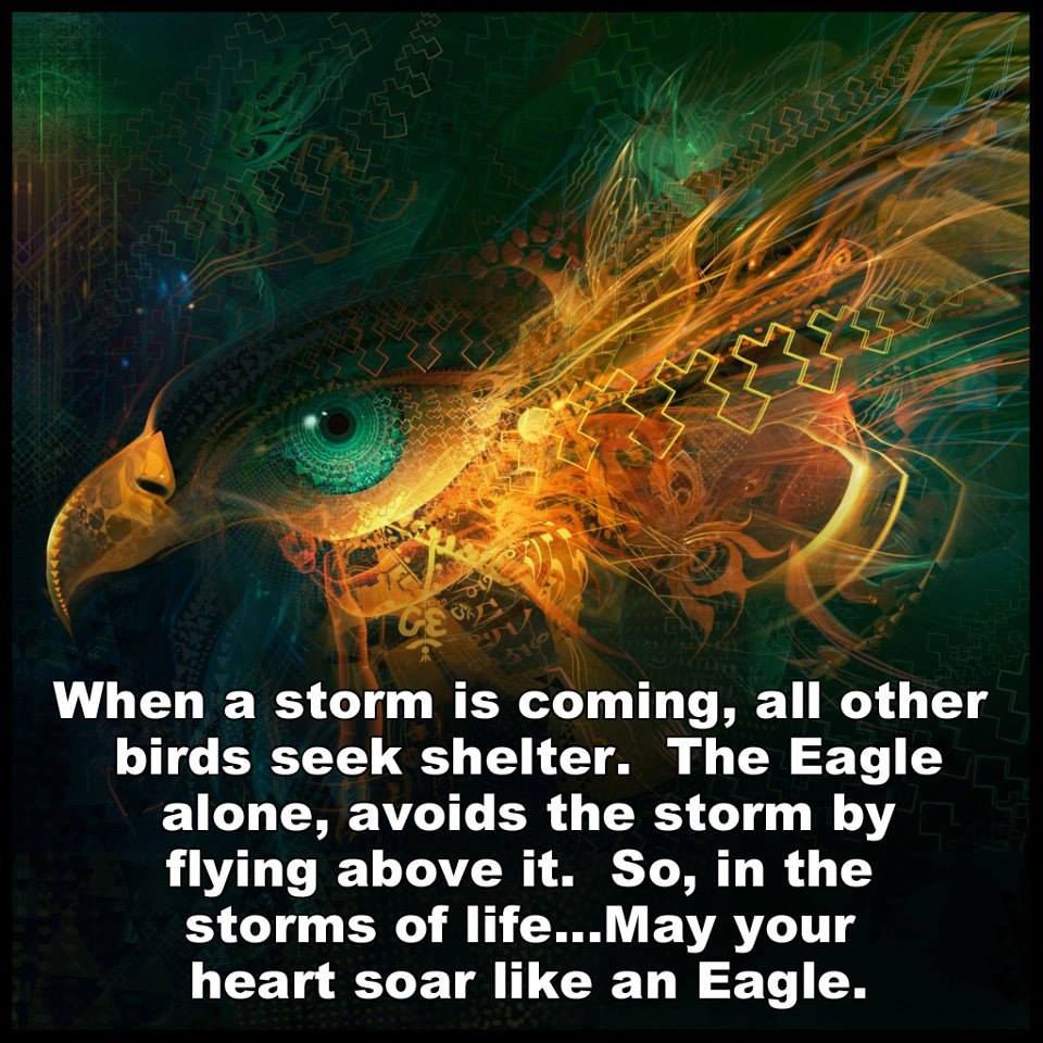 Storm by flying above it so in the storms of life may your heart