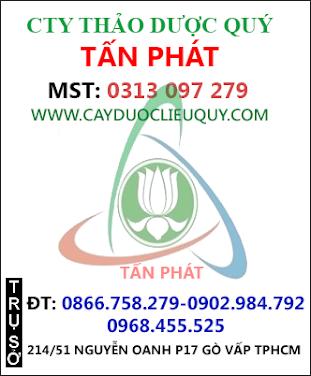 Nơi Nào bán dược liệu đinh lăng ở Hà Nội