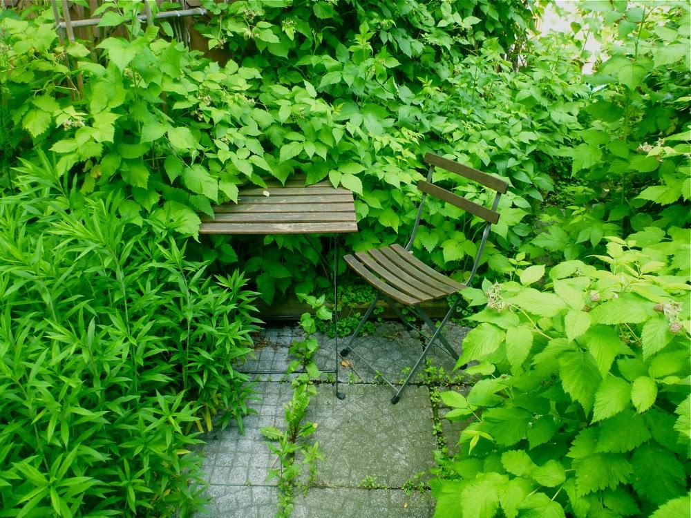 Ein Holztisch und -stuhl steht inmitten quietschgrünen Blattwerks
