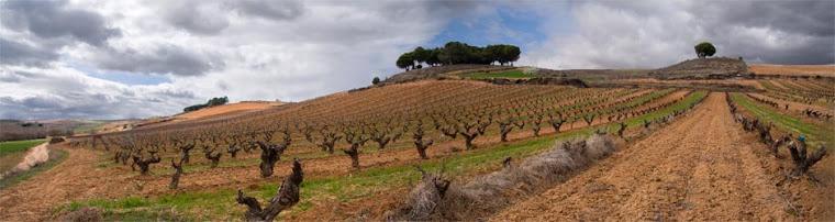 Blog turístico personal de Israel Cantalapiedra sobre La Ribera del Duero