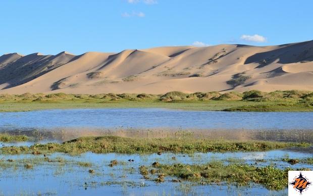 Deserto del Gobi. Seruun Bulag