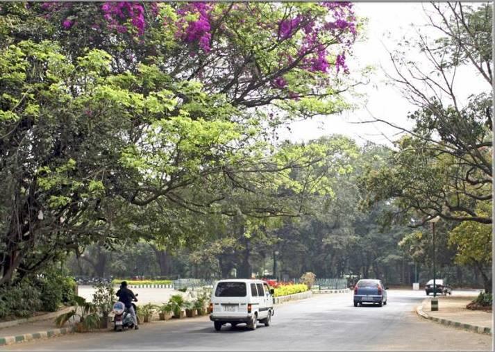 Apartment Interior Bangalore