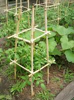 Bamboo Garden Stakes2