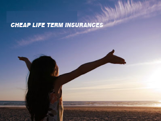 Cheap Life Term Insurances