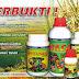Rekomendasi Pupuk Sawit Organik yang Bagus di Indonesia