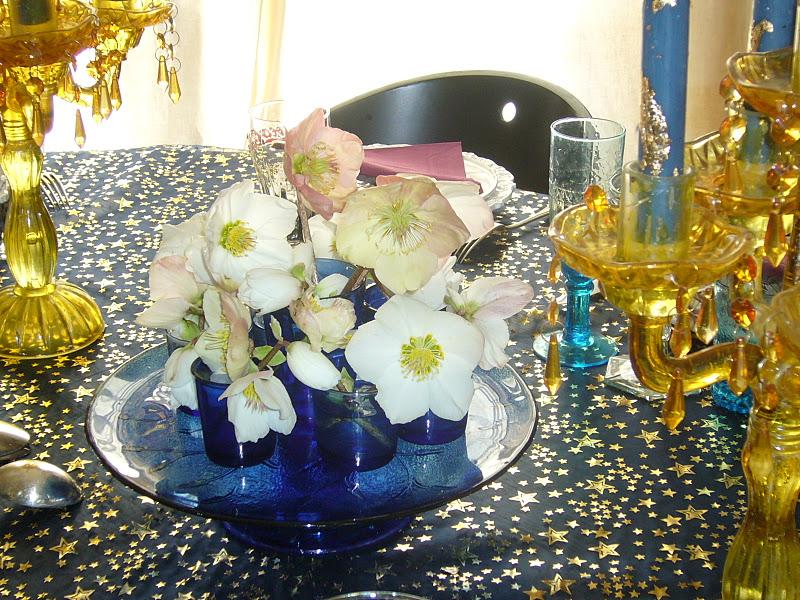 Babone 5go roses de no l - Rose de noel en pot ...