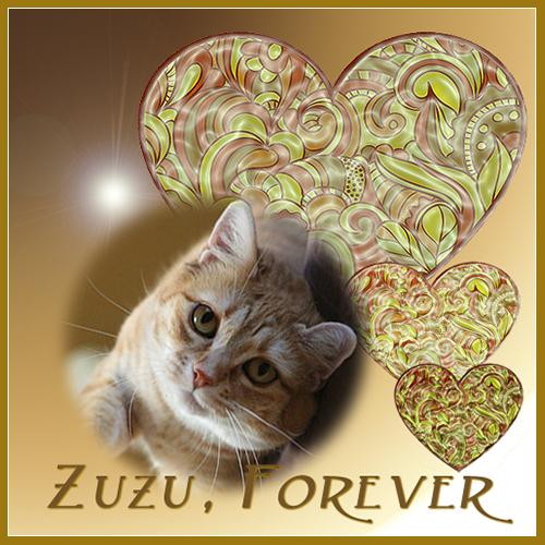 Zuzu Forever