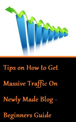 Tips on How to Get Massive Traffic On Newly Made Blog - Beginners Guide