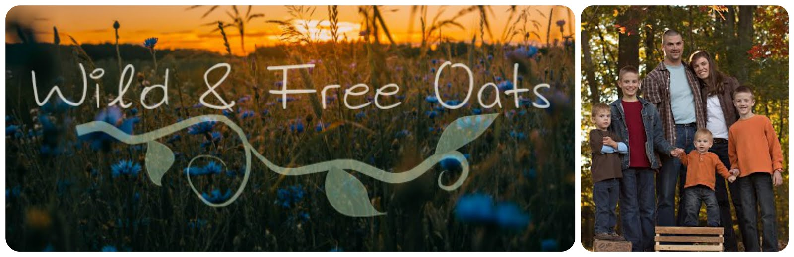 Wild & Free Oats Banner