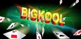 BigKool Phien Ban 2015