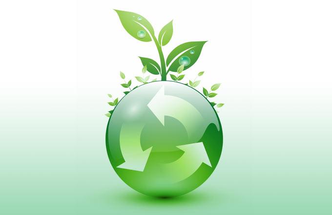 12 Consejos Para Cuidar El Medio Ambiente Taringa