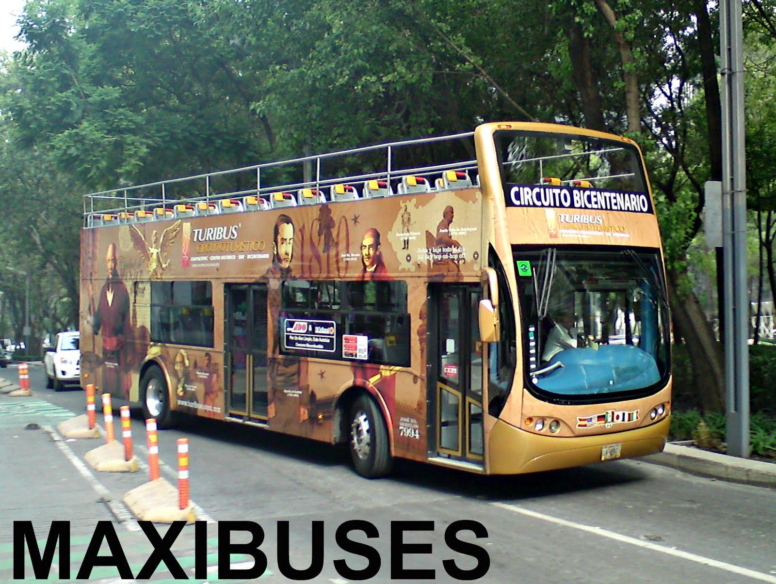 Circuito Bicentenario : Maxibuses turibus bicentenario