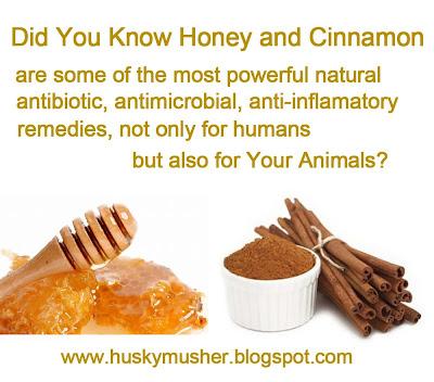 http://4.bp.blogspot.com/-Fxu1Qazjf1k/UNt622dmc9I/AAAAAAAAXRU/GD6vXWpm88k/s1600/honey+and+cinamon.jpg