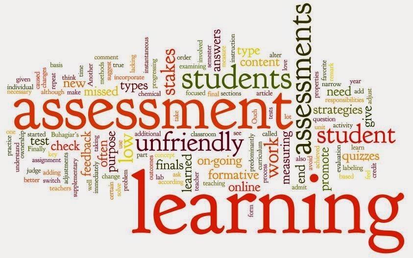 dtlls learner assessment