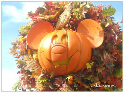 Fall at Disney World