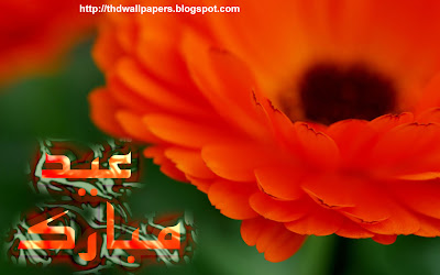 Eid Ul Zuha Adha Mubarak 2012 Flowers Card HD Wallpapers Urdu Text 003 Widescreen Jpg Format