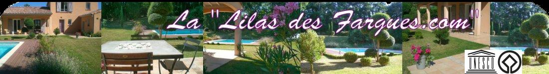 Chambres d'hôtes Albi La lilas des Fargues