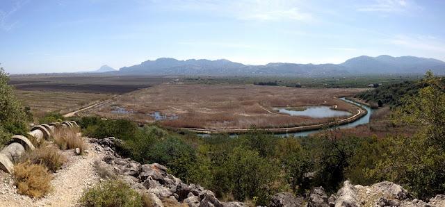 Panoràmica des de la Muntanyeta Verda de l'ullal del Salinar i la marjal fins la Segària