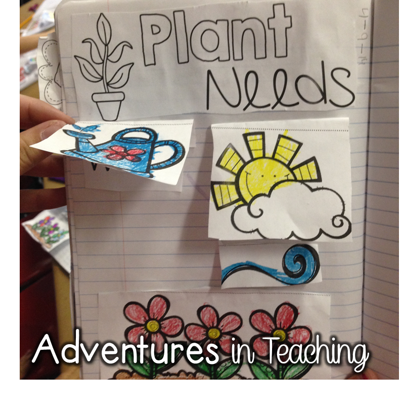 http://www.teacherspayteachers.com/Product/Interactive-Notebook-Pages-For-Your-Plant-Unit-1197807