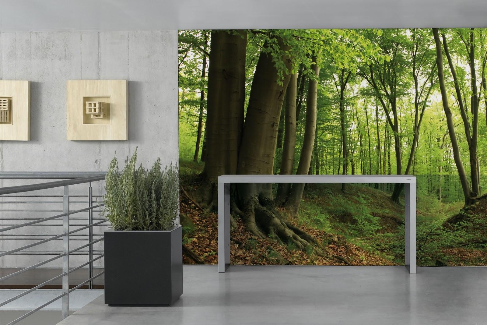 Arregui decora tus paredes con photomurales - Decorar con fotomurales ...