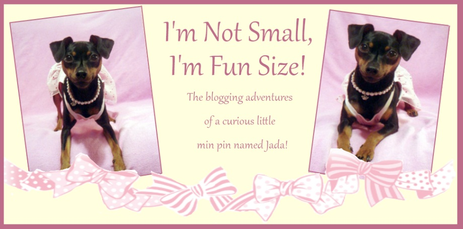 I'm Not Small, I'm Fun Size!