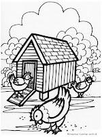 Mewarnai Gambar Peternakan Ayam Kampung