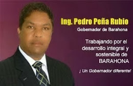 Ing. Pedro Peña Rubio