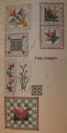 Tulip Sampler