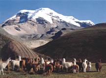 El Nevado