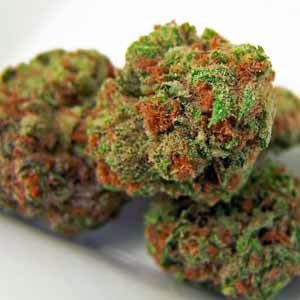 cannabis legalizada no mundo