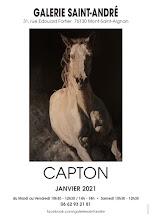 CAPTON EXPOSE À LA GALERIE SAINT ANDRÉ DE MONT SAINT AIGNAN (ROUEN)