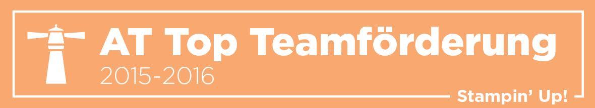 Top 5 Teamförderung