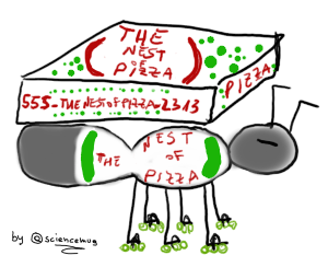 The nest of pizza delivery ant_by sciencemug