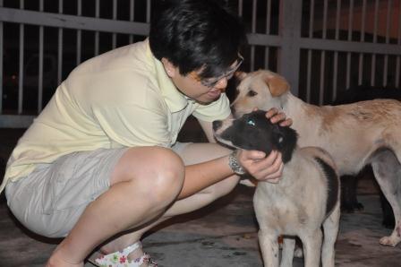 Don T Let Dog Food Go Stale