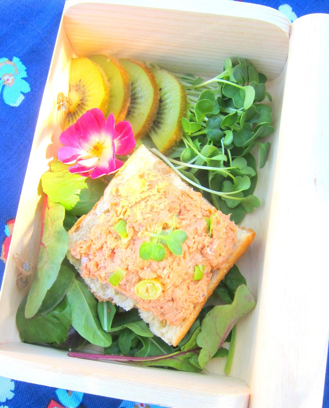 bentobird japonica sf and salmon ginger salad bento. Black Bedroom Furniture Sets. Home Design Ideas