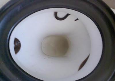 ular bersembunyi dalam tandas