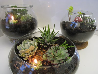 Terrarium Wedding Centerpiece Make A Mini Ecosystem Popular