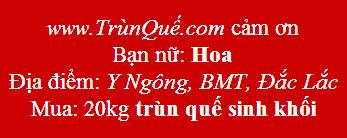 Trùn quế Y Ngông, BMT, Đắc Lắc