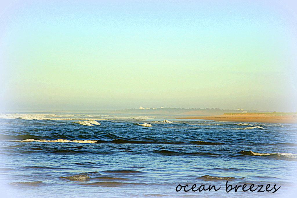 Ocean Breezes