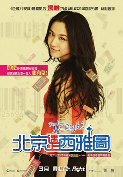 Finding Mr. Right 2013 poster