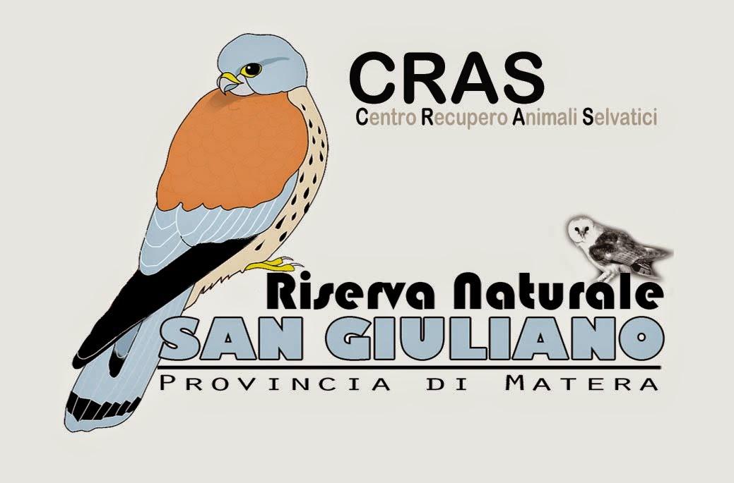 SOS FALCO GRILLAIO  3391637510