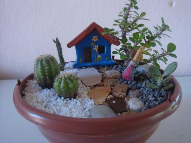 enfeites para mini jardim : enfeites para mini jardim:Nestes uma composição de pedinhas, pedriscos e seixos com plantinhas
