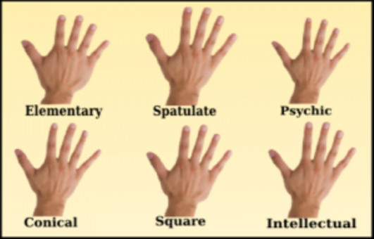 types of Hand