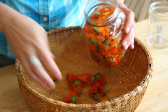 Herboristerie traditionnelle en Estrie