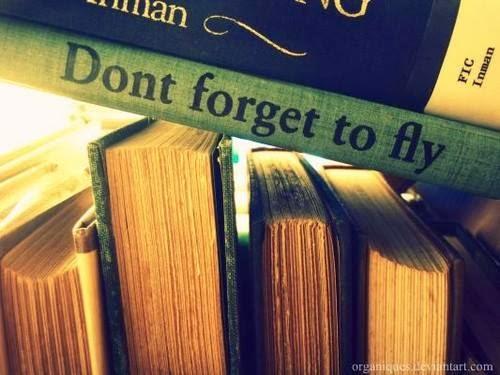 não te esqueças de voar