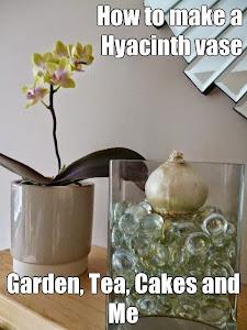 Create a Hyacinth Vase